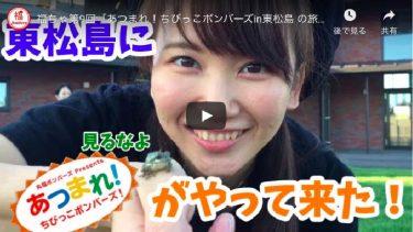第9回「あつまれ!ちびっこボンバーズin東松島 の旅」